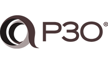 P3O® – 项目组合、项目群和项目办公室